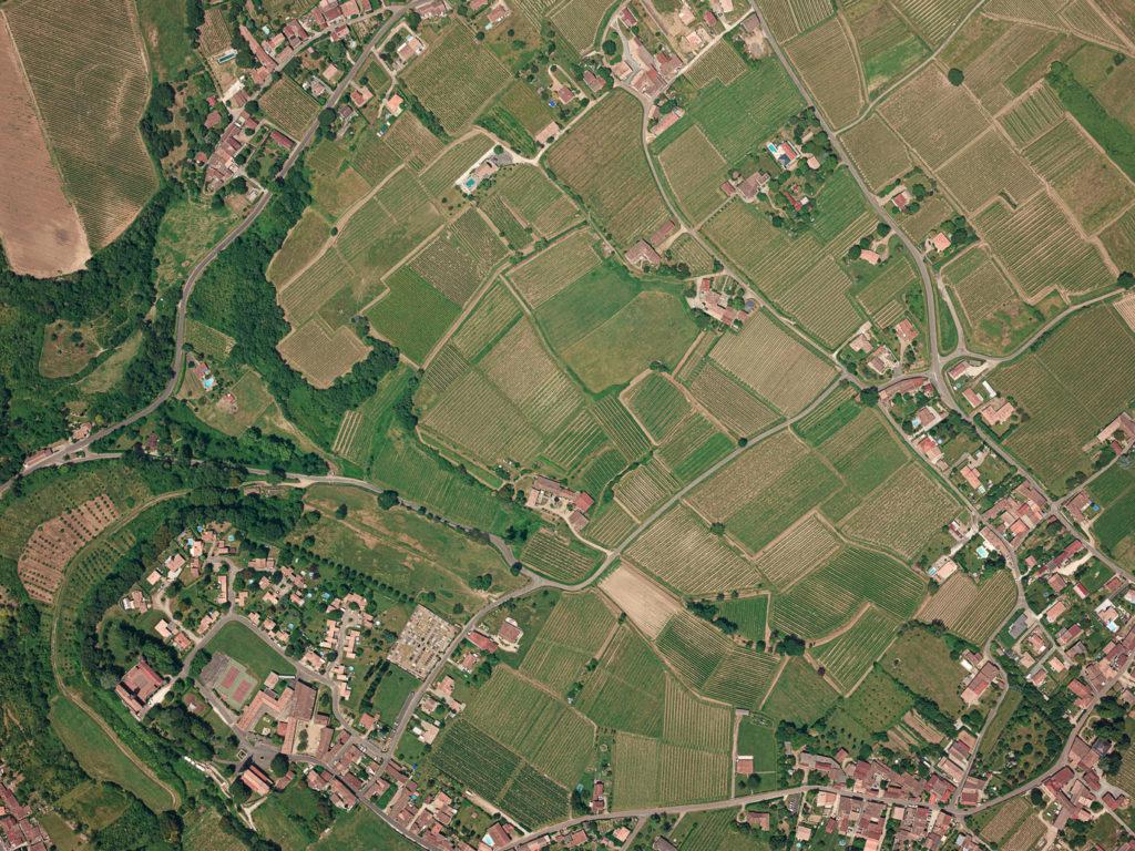 Vue aérienne de vignes par avion